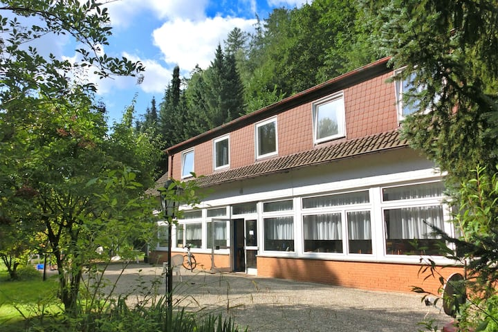 Spacious Holiday Home in Löwensen Lower Saxony near Forest