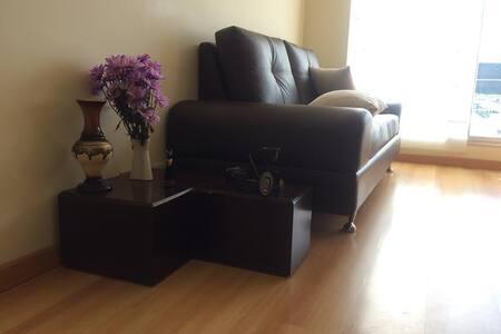 Comfortable Sofa / North Bogota - Bogotá - Apartment