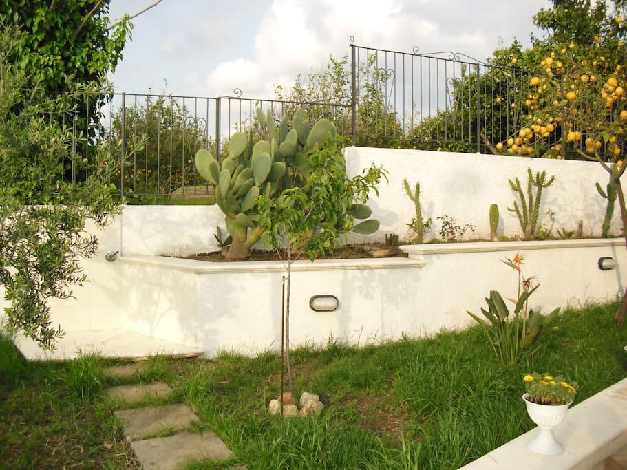 giardino con doccia esterna calda