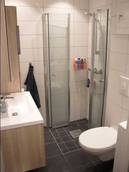 Bathroom renovated  in 2017