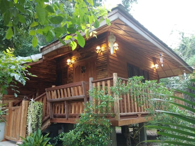Entire cabin for this listing (1 bed)