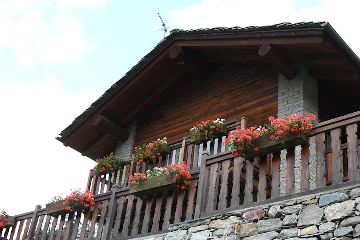 Cabin in front of Grand Paradis - Cogne - Apartment