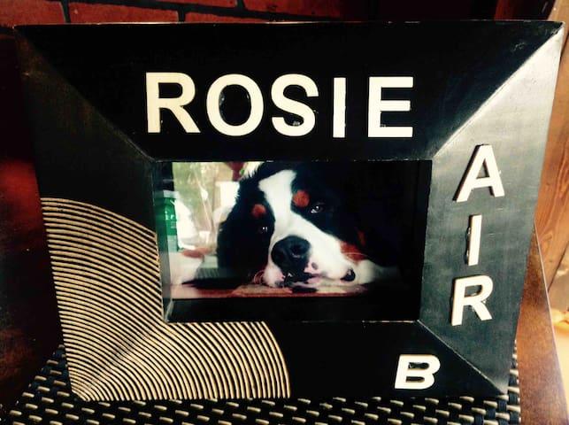 Rosie AirB