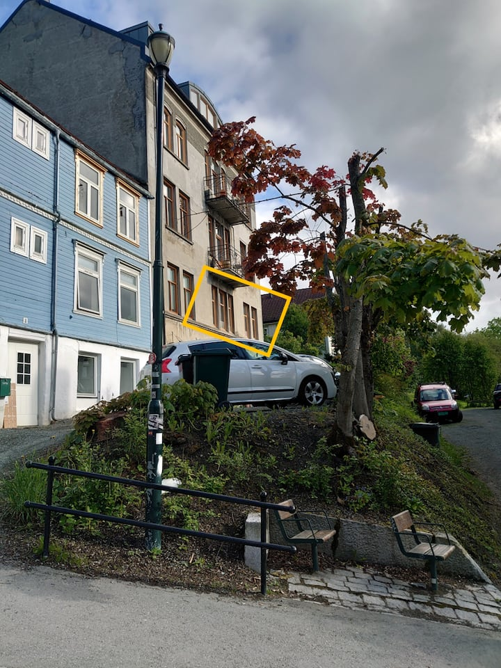 Charming apartment located in charming Bakklandet!