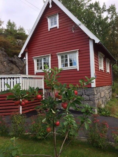 Hytte nært sjøen/ Cozy cabin close to the sea