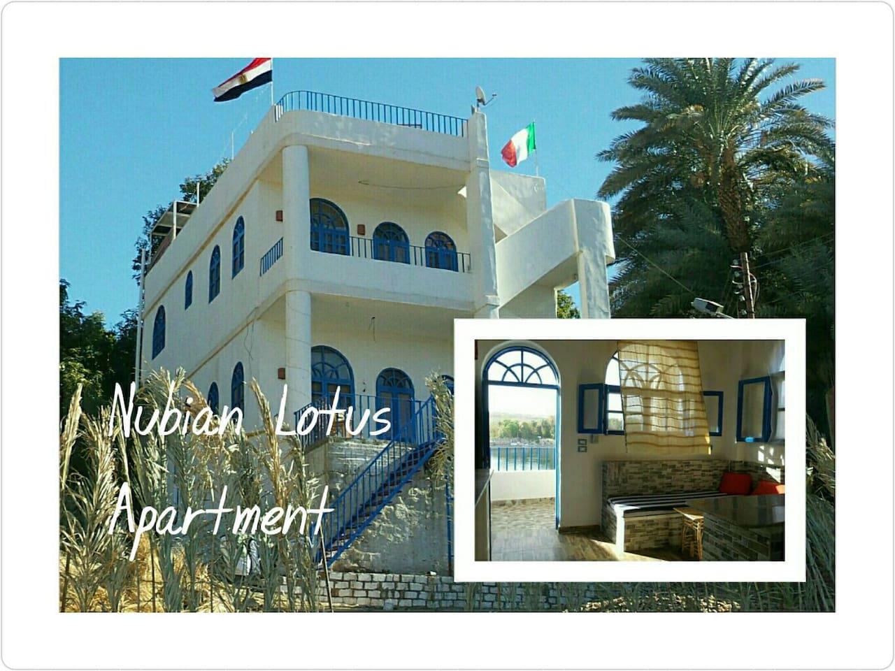Nubian Lotus (Apartment x4) - Apartments for Rent in Aswan, Aswan ...