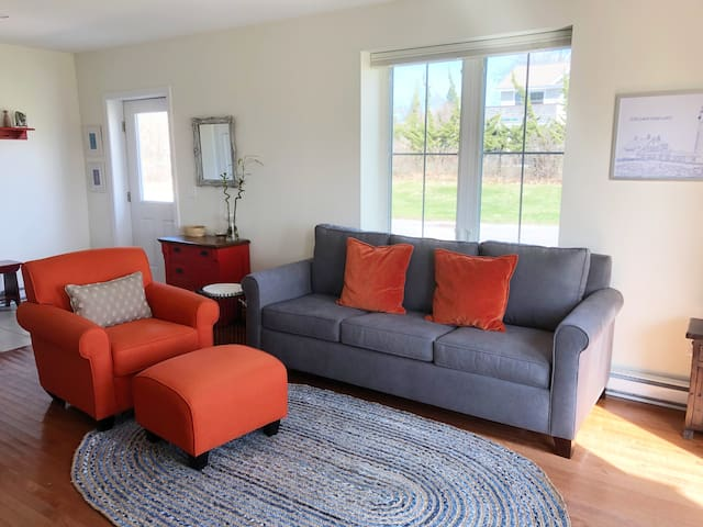 Living room features Pottery Barn sofa bed with memory foam mattress.