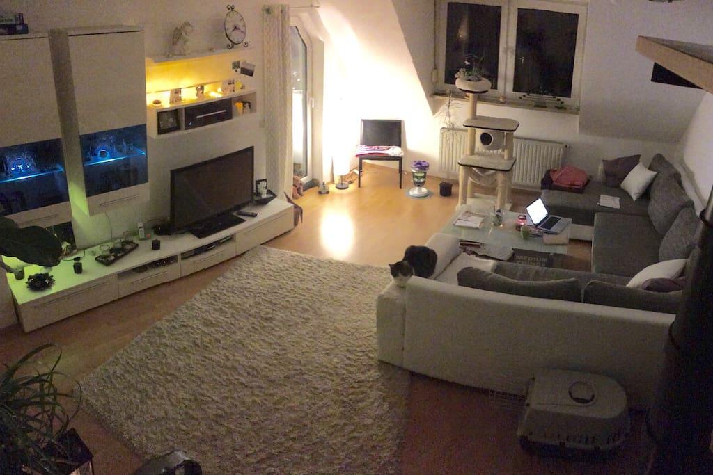 The super cozy living room