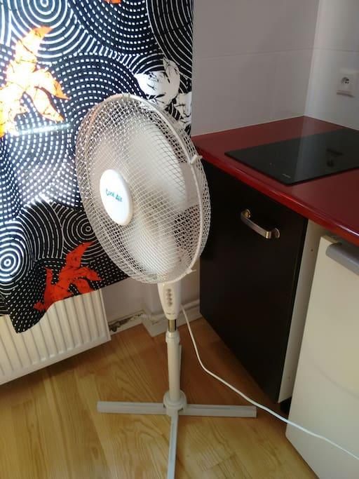 fan, wentylator