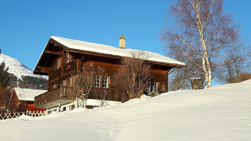 Cozy Chalet apartment in Ernen