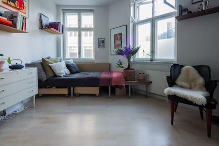 Wonderful apartment in the center of Copenhagen