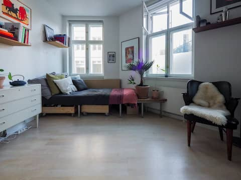 Wonderful apartment in the center of Copenhagen