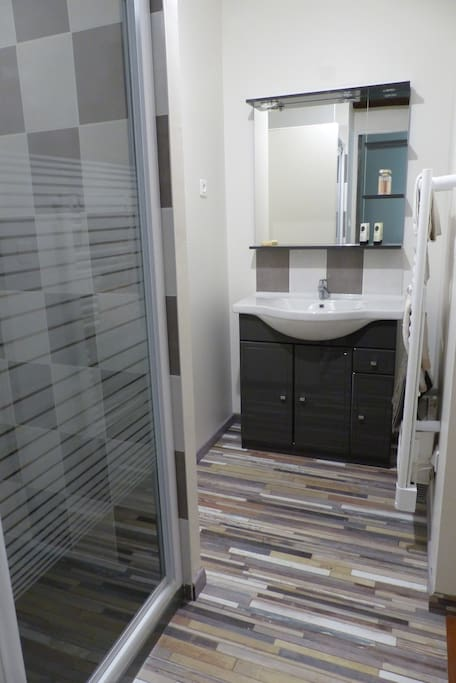 Salle de douche équipée