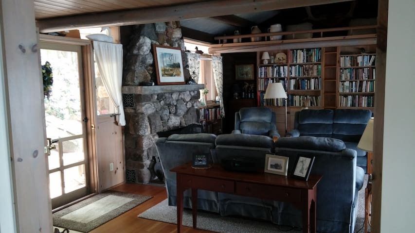 Fire place and living room