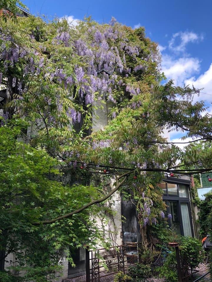 Riant achterhuis met zuiderse tuin en dakterras
