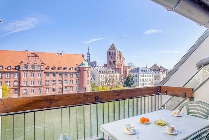 Bright apt with view, Petite France - Strasbourg