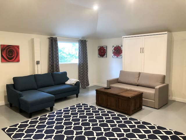 A studio living room by day, and sleeping area by night (full size Murphy bed and full size sofa bed).