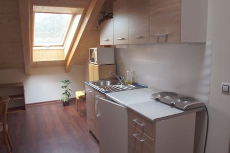 Homely attic room with kitchennete - Brno - House