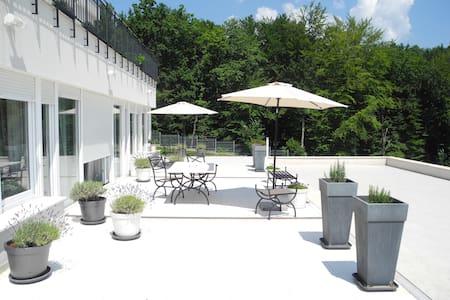 Beautiful sunny apartment in Villa - Zagabria