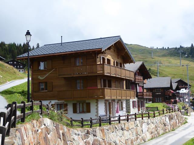 Chalet Alphorn - Bettmeralp (the better alp)