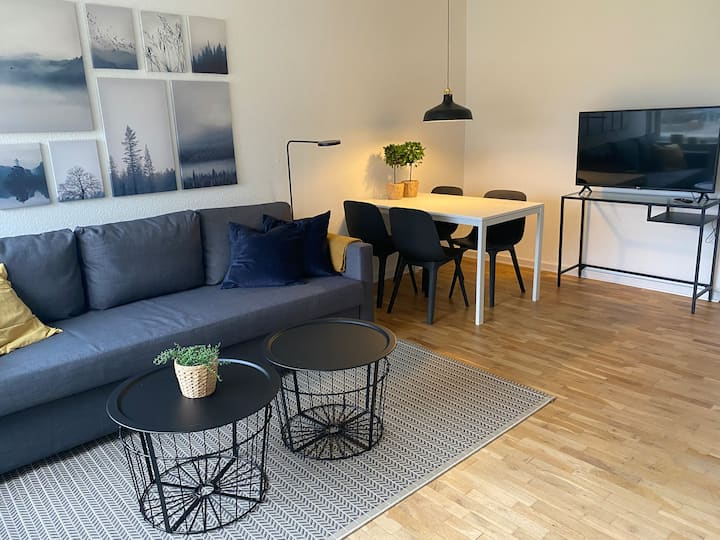 T47b2 3 bedroom apartment in suburb to cph