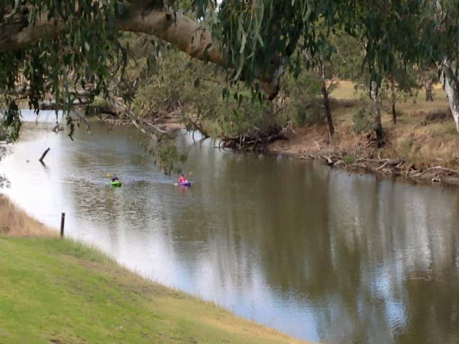 River Activities - Kayaks
