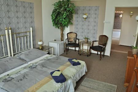 Big room, 2 beds center of Teplice