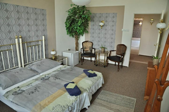 Big room, 2 beds center of Teplice
