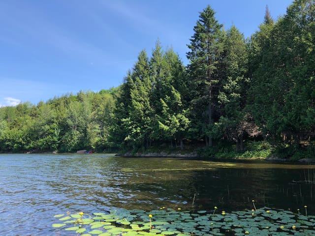 La Salamandre, lakefront country home