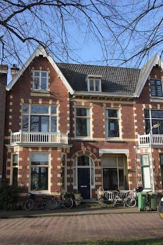 Hidden pearl of Holland / Haarlem 2e floor