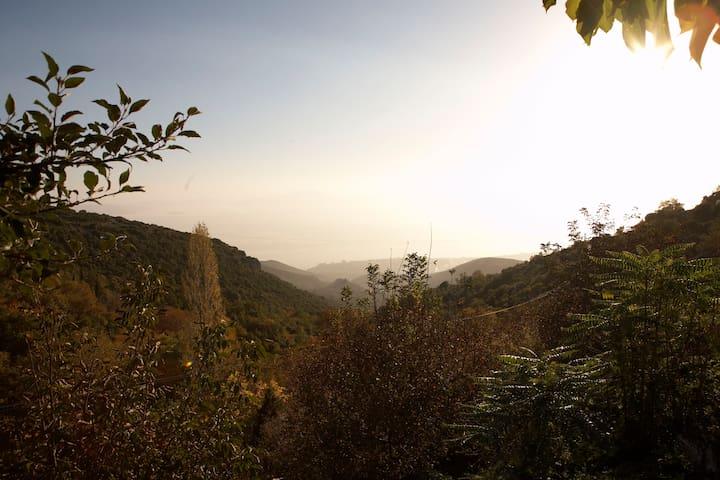 Pelion Bungalow, Cliffhanger XL - Agios Georgios Nileias