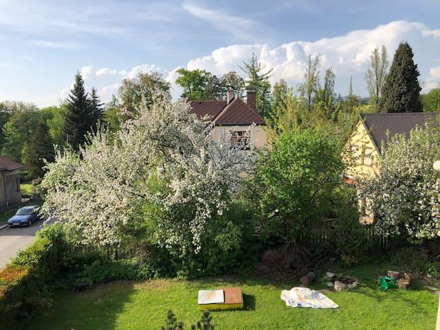 Byt se zahradou v top lokalitě Českého Ráje