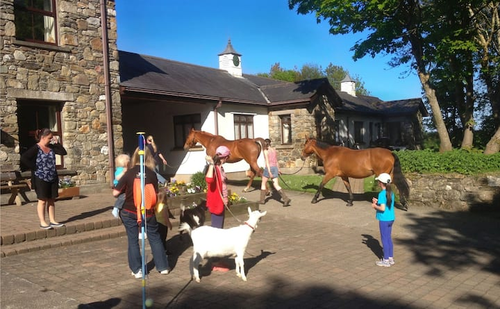 Perfect farm self catering, lots for kids to do!