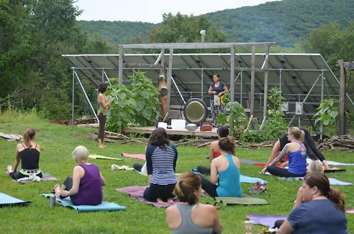 Yoga in the Heart Field