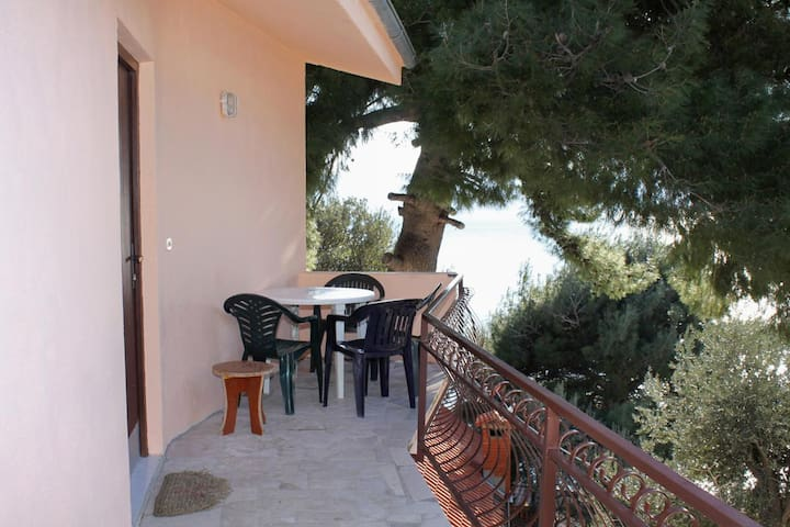 Studio flat with terrace and sea view Zavode, Omiš (AS-5252-a)