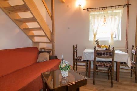 Apartment 4 on the mountain Tara - Mitrovac