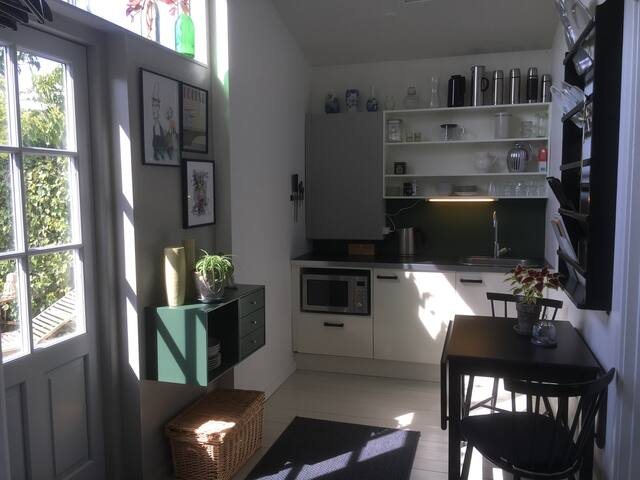 Kitchenette with microwave and 1 hotplate