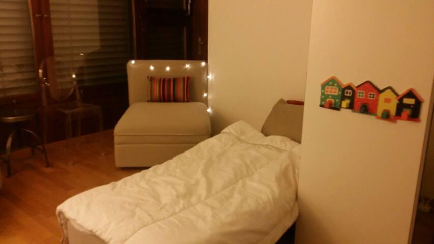 No Frills, Cozy Budget Bedsit! - Zürich - Appartement