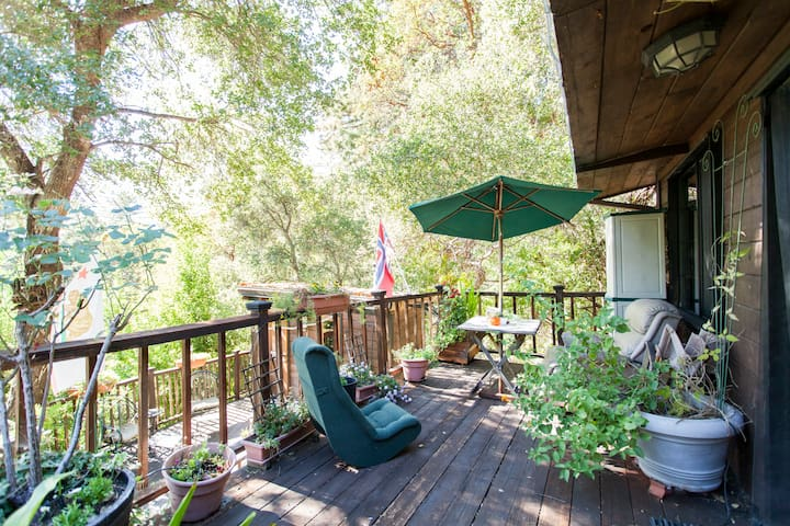 Cozy guest house - Los Gatos - Cabana