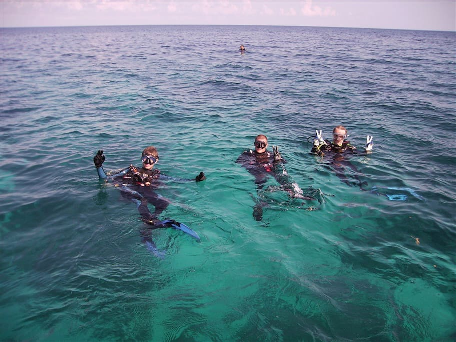 Dive trips to blue hole are organized for you