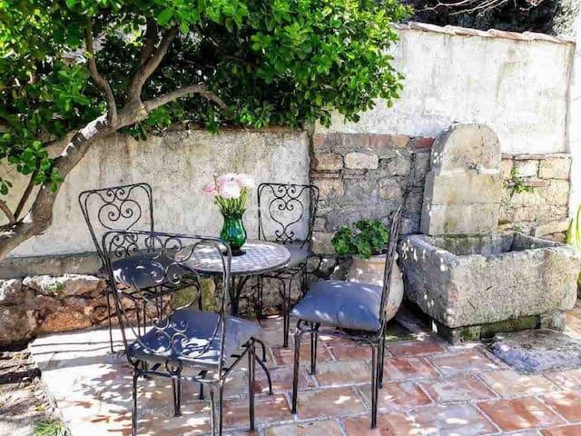 Prendre ses repas à l'ombre du pittosporum face au jardin et la piscine