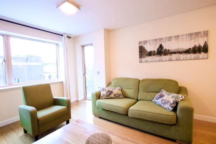 Luxury city centre large apartment in dublin 2