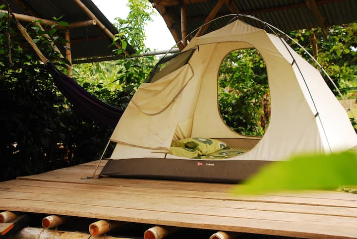 Single Tent w/Surfboard - Maracumbo