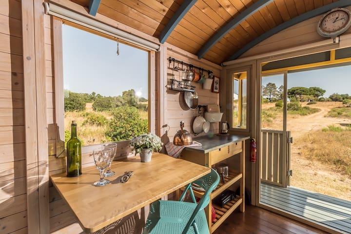 Shepherds hut on organic farm