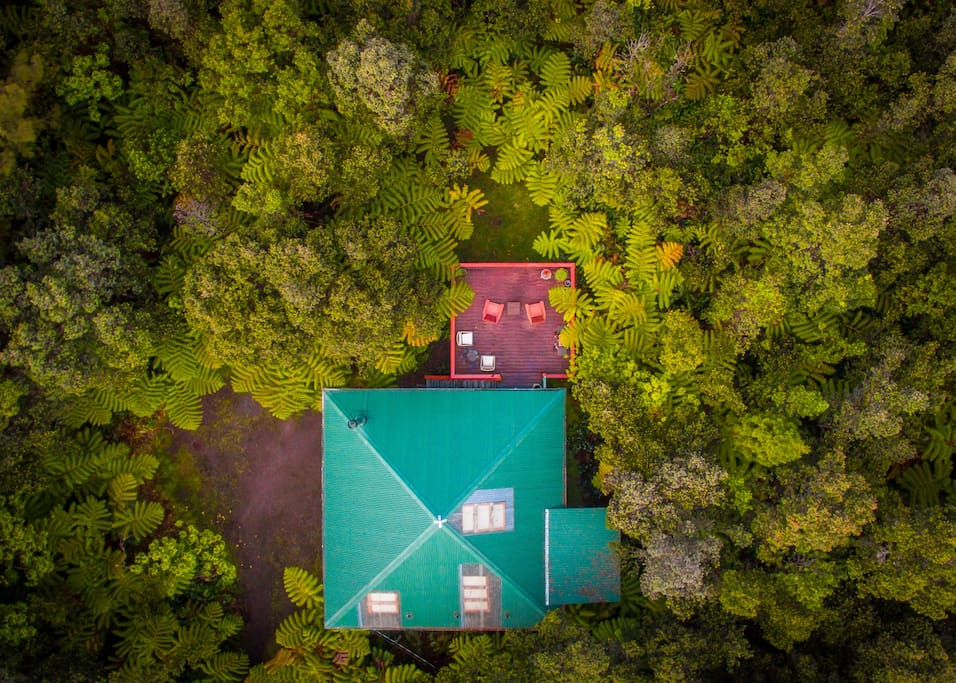 Aerial view of house and lush forest on all sides.