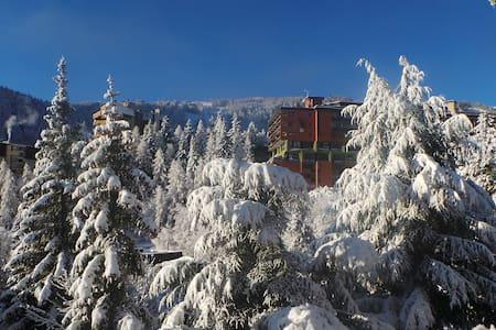 Appartement à la montagne --> Pra Loup 1600 - Uvernet-Fours