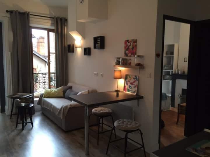Le 18 Appartement 30 m2 rénové centre ville Roanne
