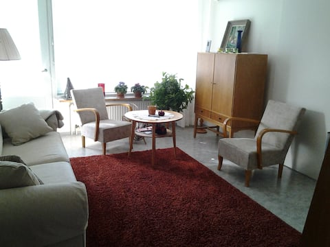 Aparment in a quiet house.