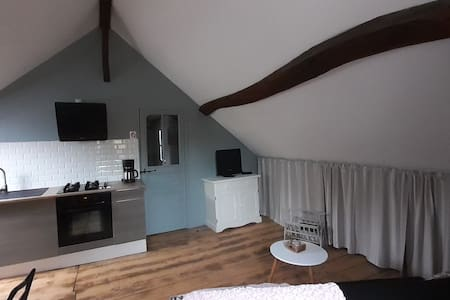 Mer : Bel appartement chaleureux