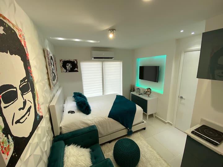 Artsy Fun Apartment Studio Queen Bed Downtown 2-5